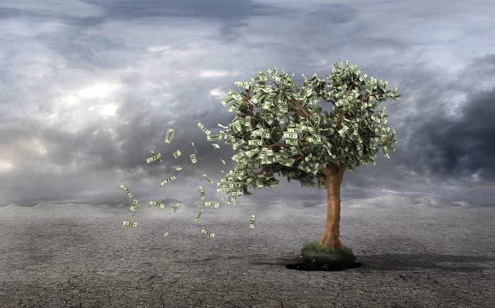 お金のなる木が枯れる